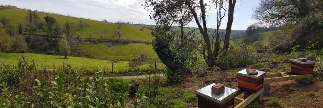 South Hams valley view from a Stone's Honey Devon apiary with bee hives in view