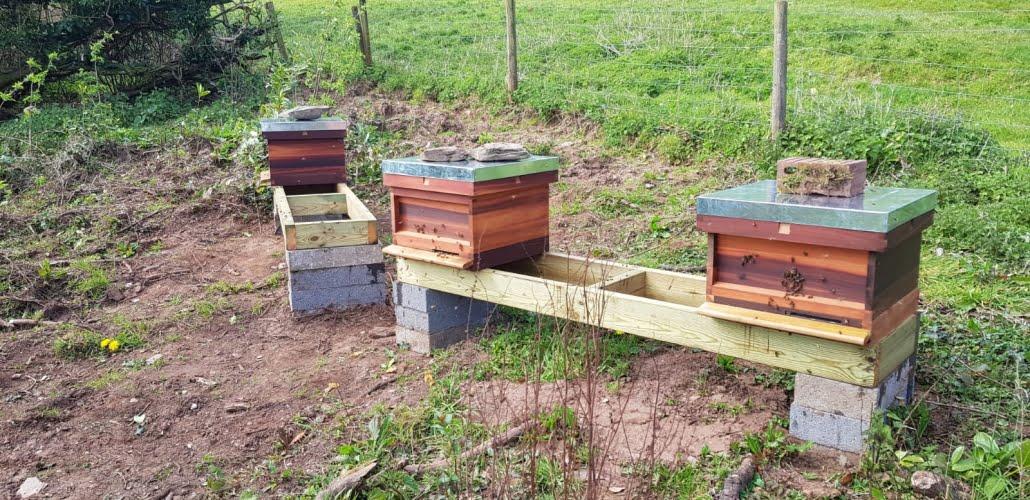 South hams, Devon bee hives at a Stone's Honey apiary